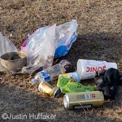 EarthDay-December 24, 2012-DSC_0956 v2jh