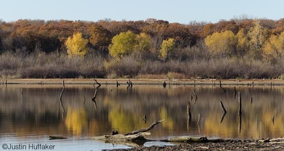EarthDay-November 24, 2012-DSC_0728 v2jh